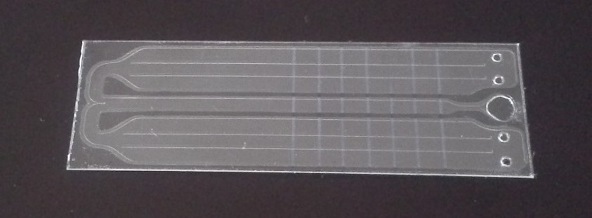 Fully foil based microfluidic diagnostic chip for detection of antibiotics resistant bacteria